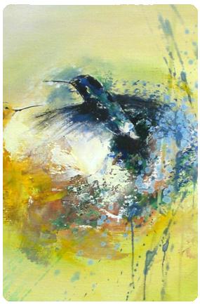 Kolibri_rondehoek